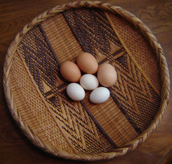 how to tell if an egg is fertile before incubation