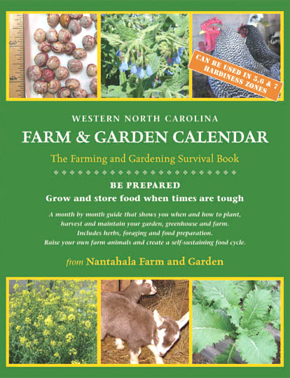 Live Comfrey roots/seeds  Garden Books  Vacation Rental